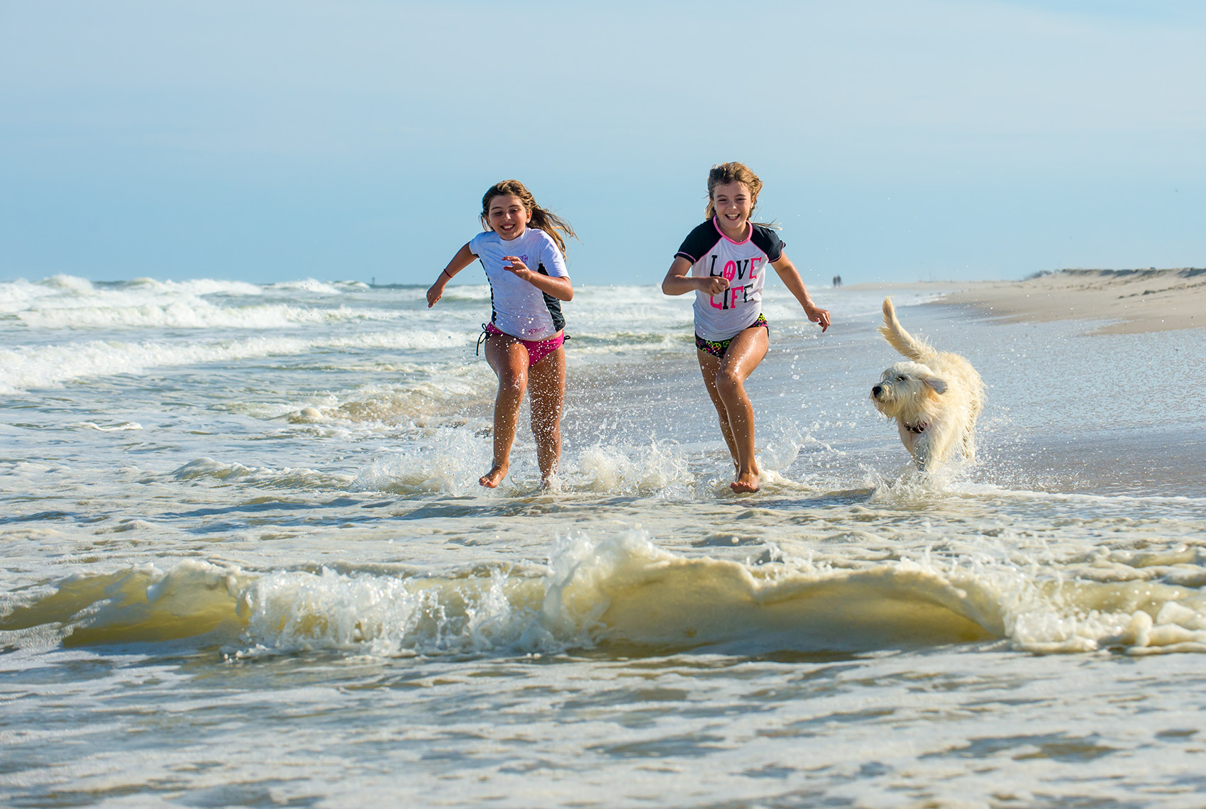 kathy_cacicedo_surf_safari_run_dog