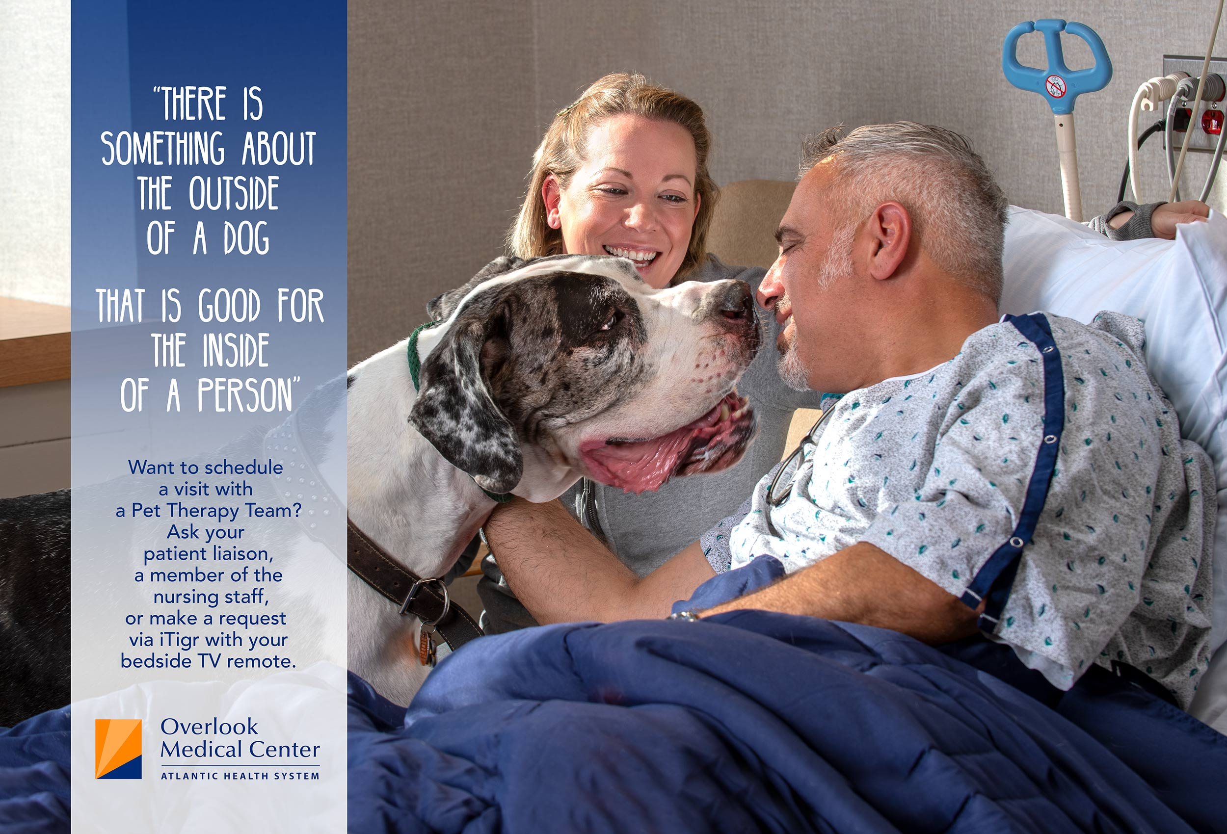 overlook_pet_therapy_greatdane_poster