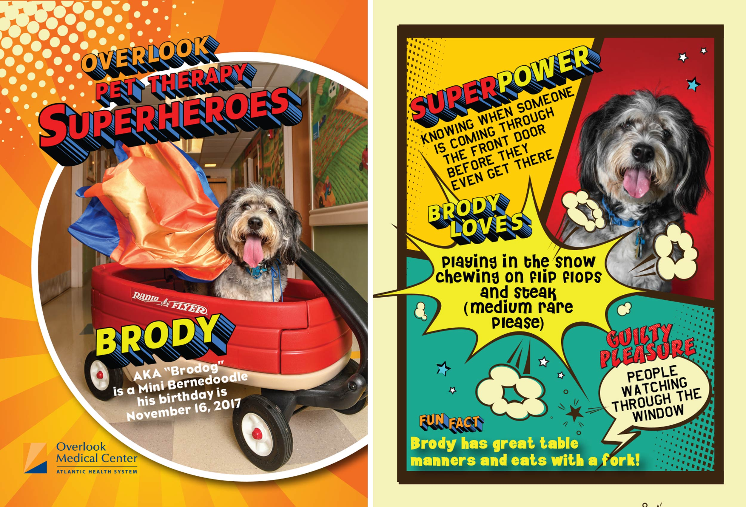 therapy_dog_trading_card_brody
